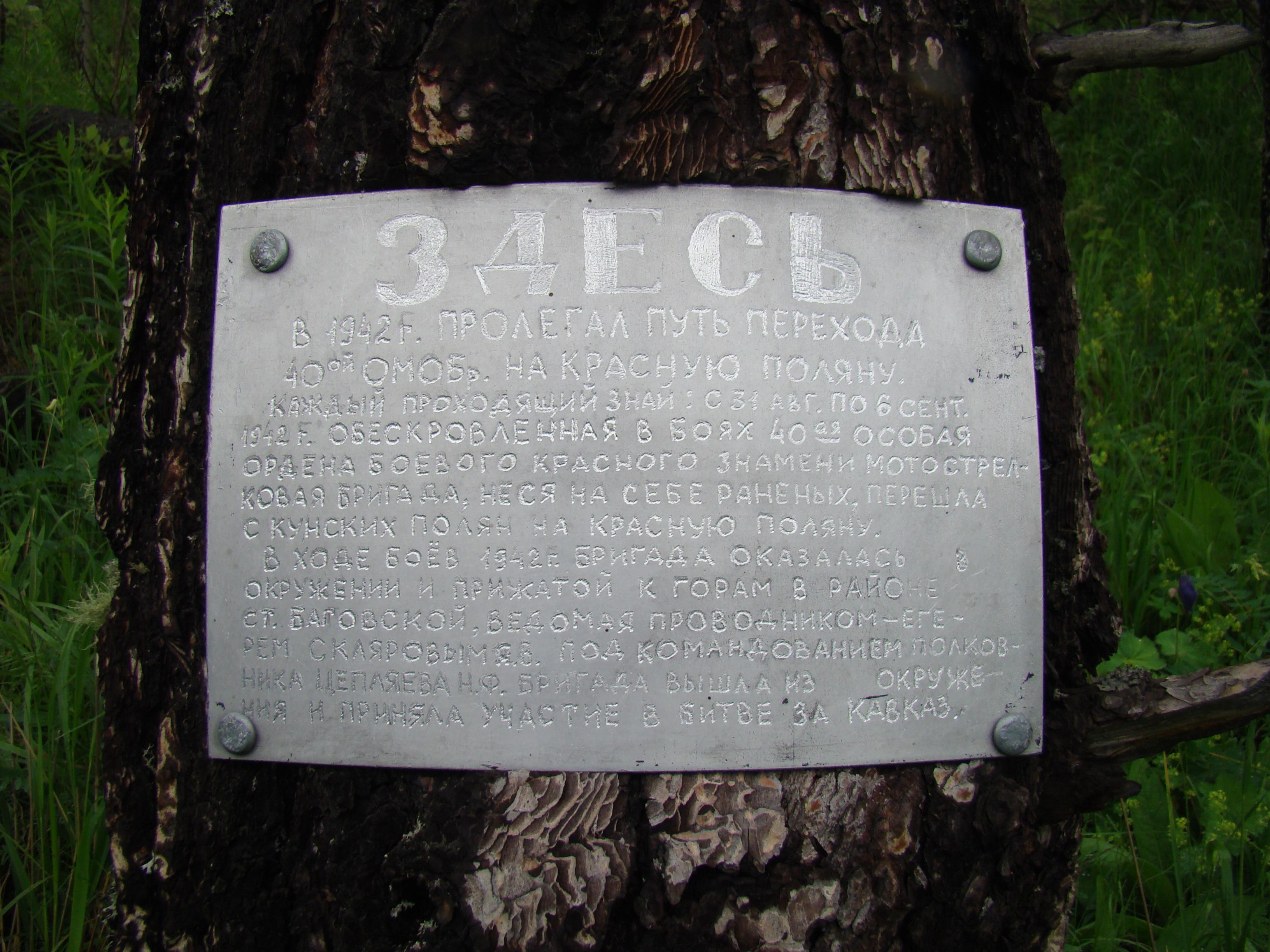 DSC08729